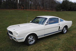 '66 GT350 Pictures