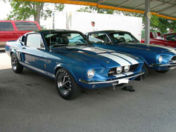 '67 GT 500 Pictures